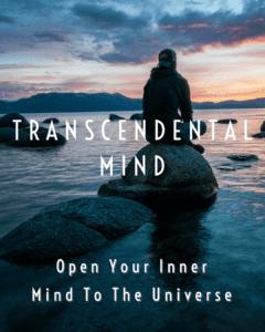 Trans. Mind thumb