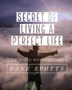 secret of perfect life poster